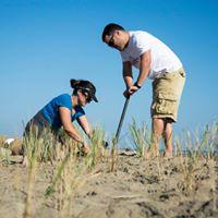 Two volunteers restoring dune at Dam Neck