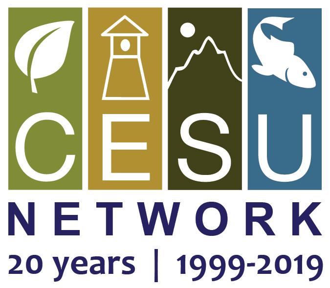 CESU 20th anniversary logo
